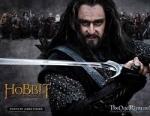 Richard Armitage as Thorin (The Hobbit, New Line Cinema, 2012)