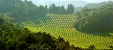 Midgard, France (Carcassonne Countryside)