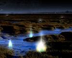 Will-o'-the-Wisps (Marsh Lights)