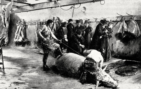 """19th Century Male Fantasy: Woman as Vampire, """"The Blood Drinkers,"""" a line of invalid women given cups of blood from freshly slaughtered ox (Joseph-Ferdinand Gueldry, 1898)"""