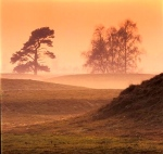 Sutton Hoo Burial Mounds (6th & 7th Century Cemeteries; Suffolk, England)