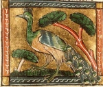"Inspiration of Medieval Language & Literature: Chansons de Geste (""Peacock,"" Illum. ms, Brit. Library, Royal MS 2 B. vii, f. 125r)"