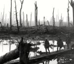 """""""Duckboard Path in Flanders"""" (from Nancy Marie Ott article, """"JRR Tolkien & WW I"""")"""